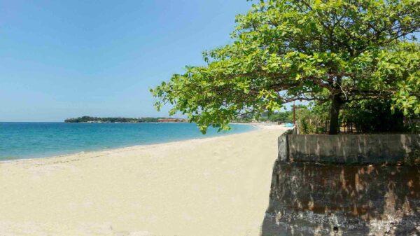 Aureo La Union Beach Resorts