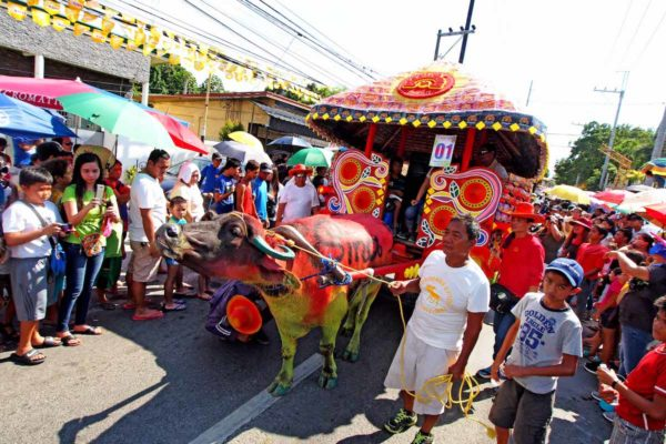 Brightly Painted Carabao at the 2018 Kneeling Carabao Fest
