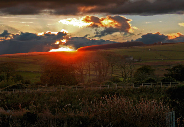 Sunset in the desolate moor.