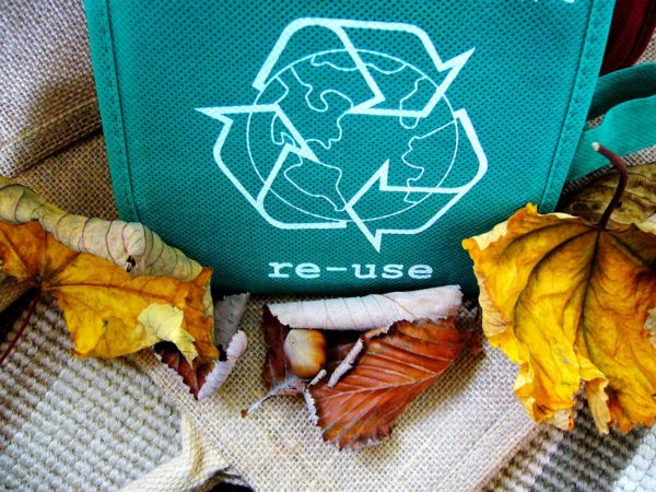 Re-usable Bags to eliminate Plastics