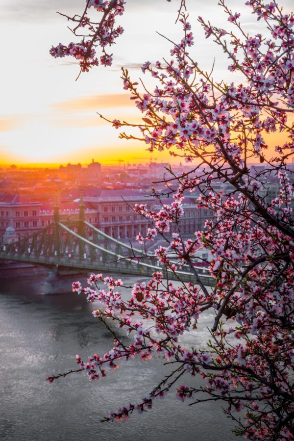 Best things to do in Budapest photo by Daniel Olah via Unsplash