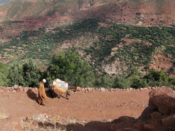Mount Atlas Morocco
