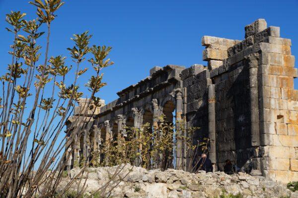 The Roman Ruins of Volubilis