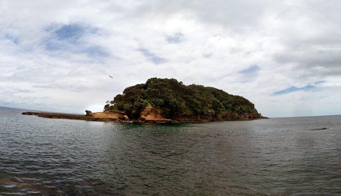 Goat Island Auckland by Sleeps-Darkly via Wikipedia CC