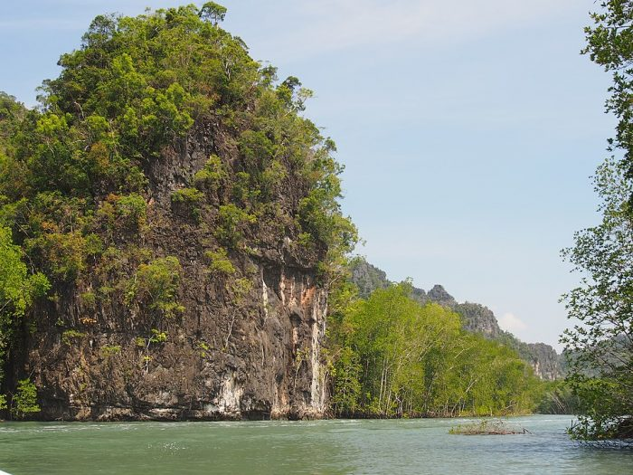 Kilim Geoforest Park, Langkawi By Dcpeets - Own work, CC BY-SA 4.0