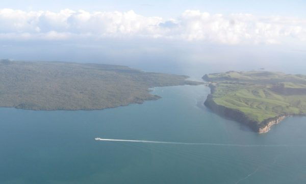 Motutapu Island by Ingolfson via Wikipedia CC