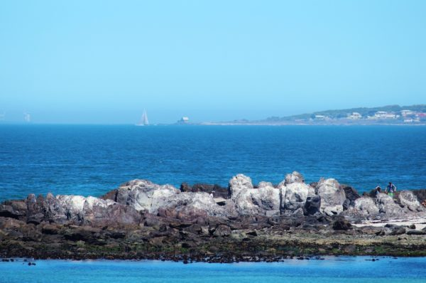 Robben Island in South Africa
