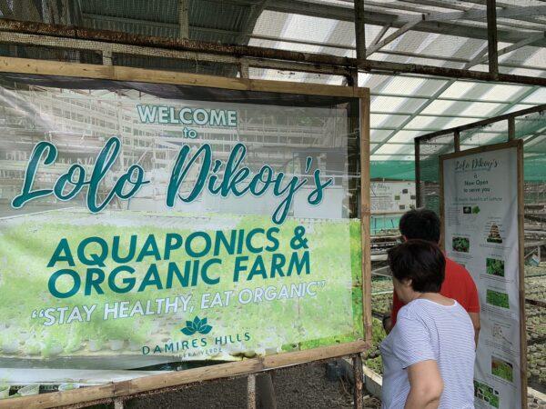 Lolo Dikoys Aquaphonics and Organic Farm