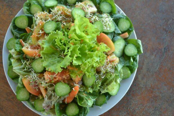 Fresh Salad at Costales Nature Farms