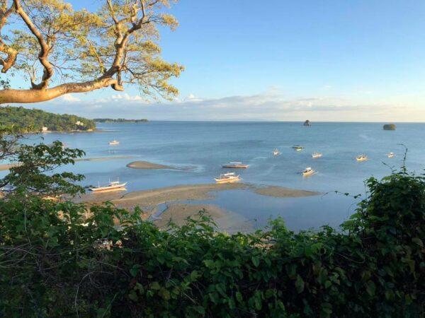 Tamarind Tree Resort in Padre Burgos
