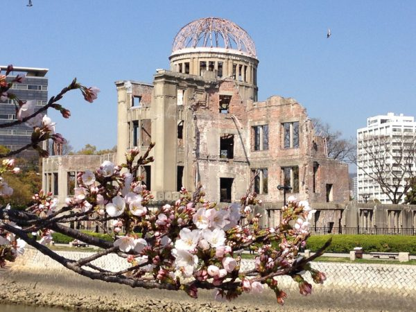 Cherry Blossoms in Hiroshima Japan