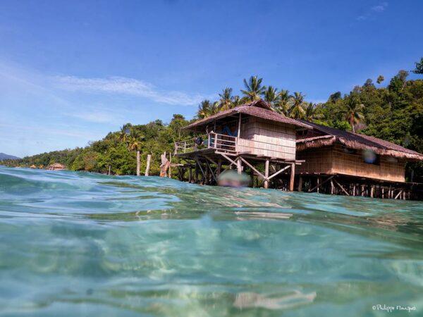 Alter Native Stay in Raja Ampat Indonesia