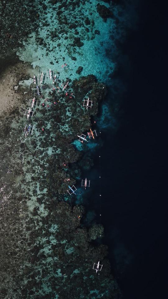 Snokeling at Coral Sanctuary Pamilacan Island - by Fabian Encarnacion
