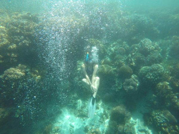Snorkeling Pamilacan Island- Gabrielle M