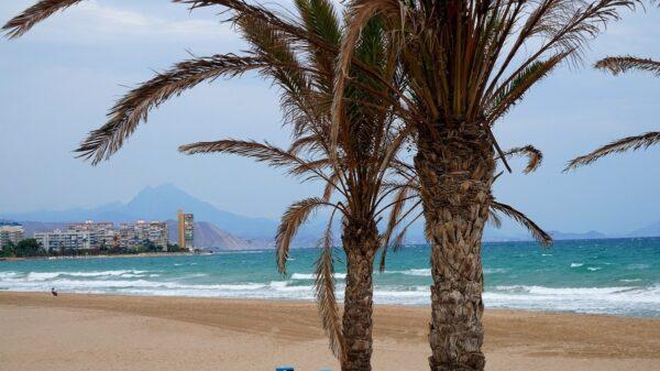 Beach in Alicante Travel Guide