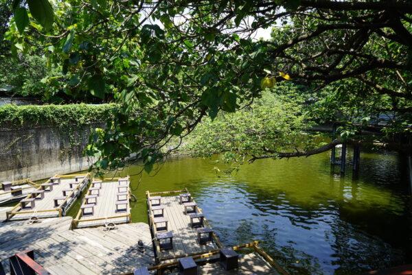 Secret Water Pond
