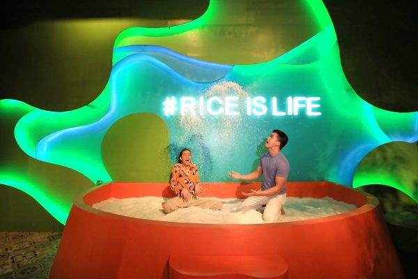Rice is Life Instagrammable Spot