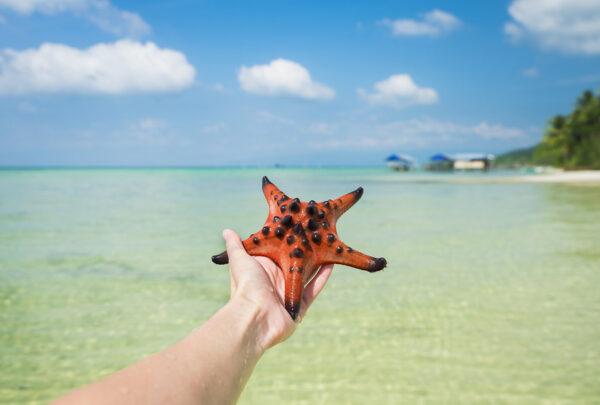 Starfish Beach, Phu Quoc Island