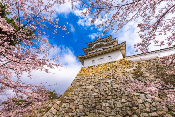 Akashi, Japan at Akashi Castle in spring