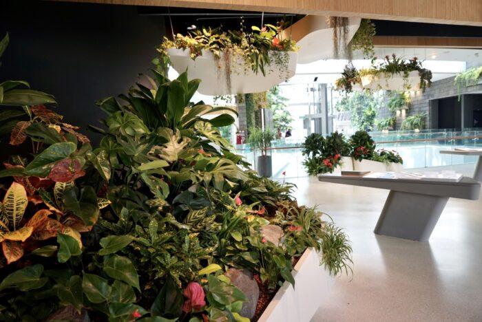 Garden inside Jewel Changi Airport