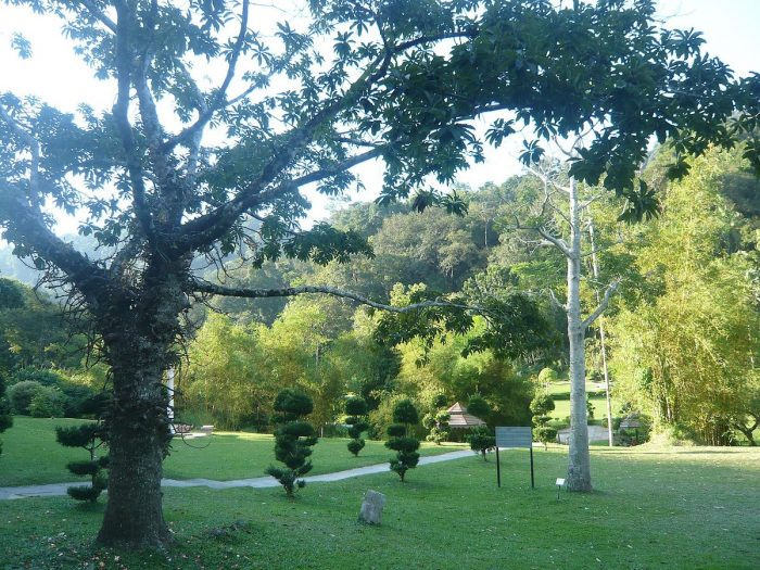Penang Botanic Gardens by Dr htgoon via Wikipedia CC