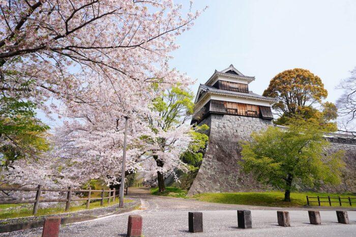 Kumamoto Castle photo by @jcs_chen via Unsplash