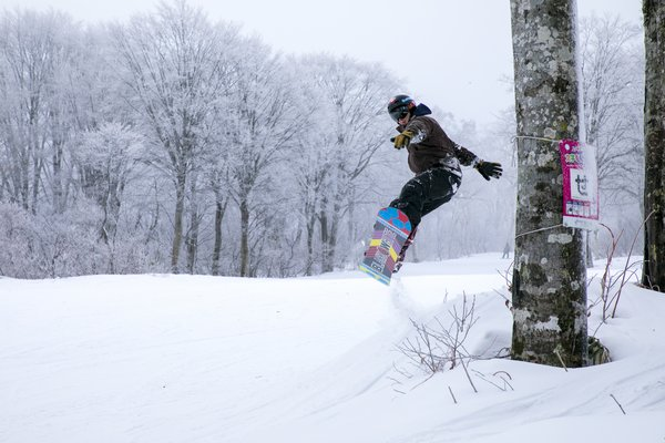 Shred the powder at the famous Nozawa Onsen ski resort.