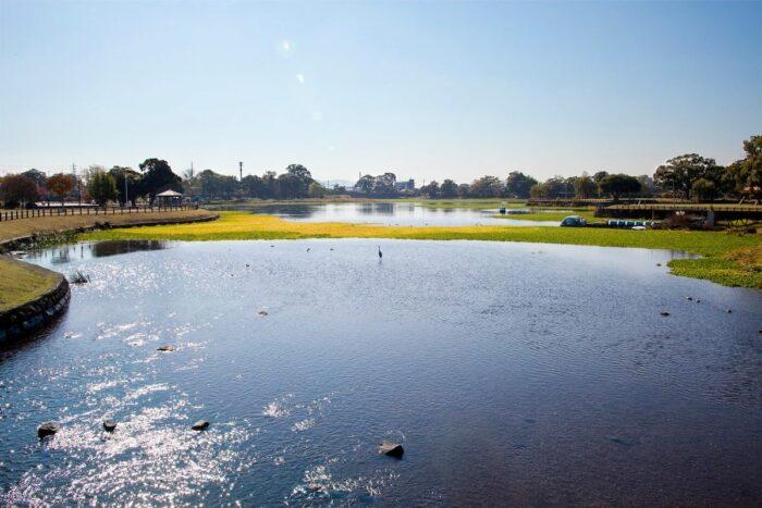 Suizenji Ezuko park photo by Kumamon's Kumamoto Diary FB Page