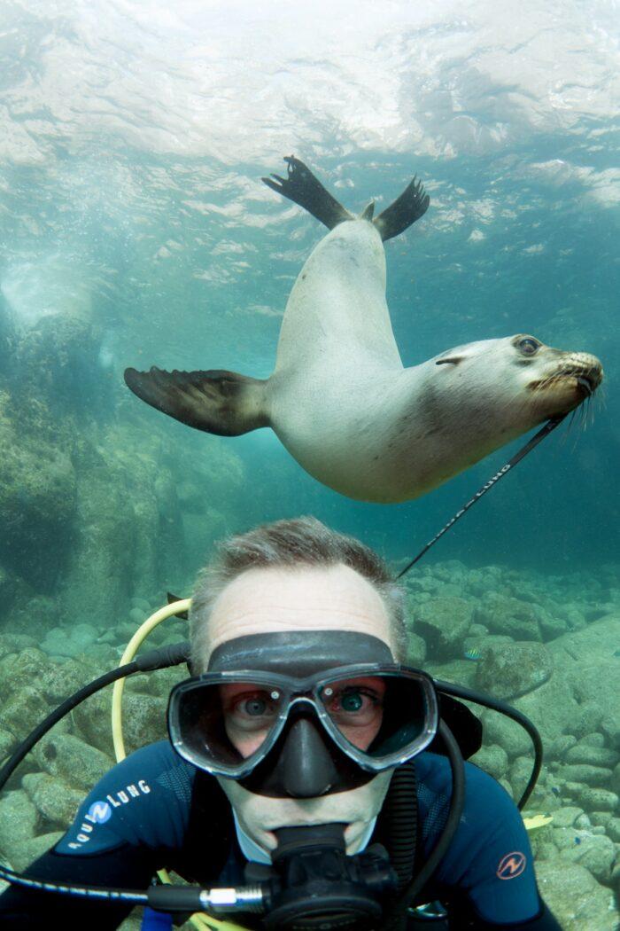 Diving at La Paz (Mexico) at the Sea lion Colony photo by @pascalvendel via Unsplash