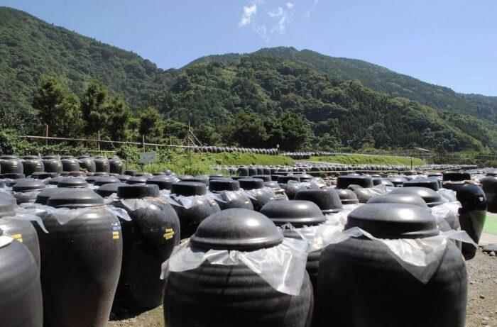 Kagoshima Black Vinegar Making photo via Kagoshima Travel Guide FB Page