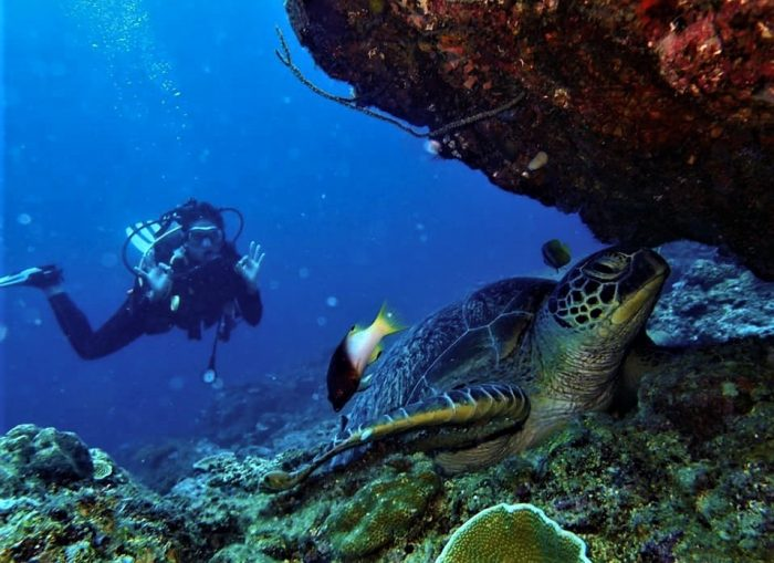 Scuba diving in El Nido photo via Ten Knots