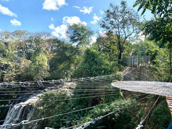 Spider Web at Hinulugang Taktak photo by Ramon Marinas