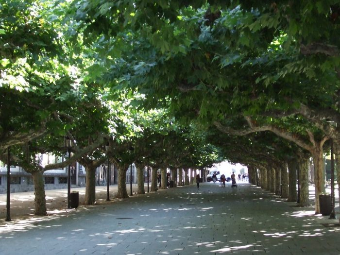 Paseo del Espolon by Lumiago via Flickr CC