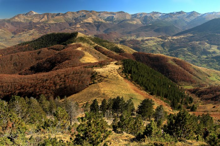 Sharr Mountains National Park by Ben Njeri via Wikipedia CC
