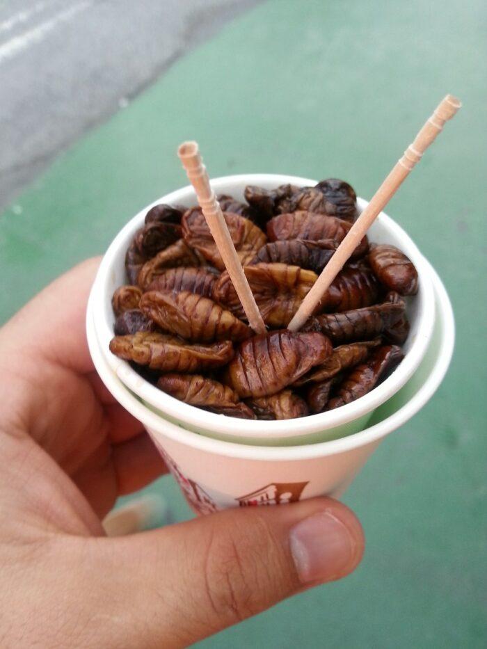 beondegi, street food in Korea photo via Pixabay
