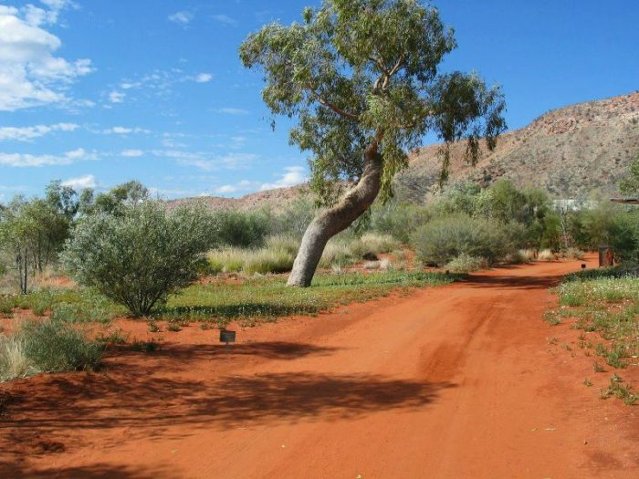 Alice Springs Desert Park photo via FB Page