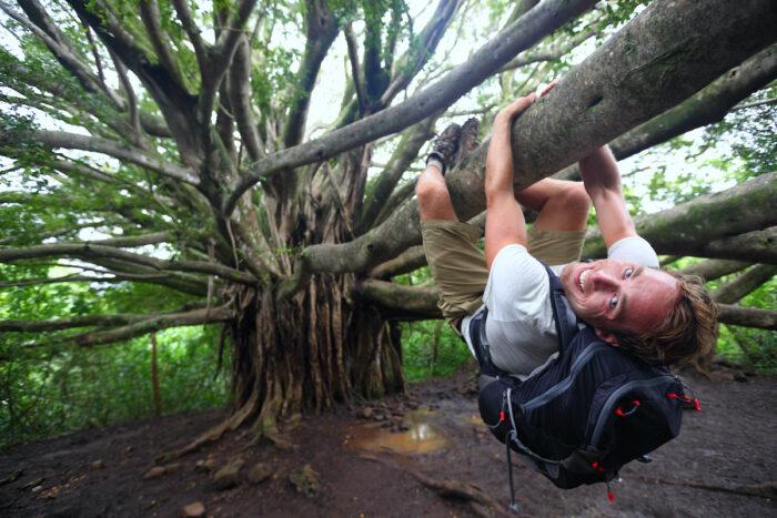 Banyan Tree Park in Maui Hawaii photos via DepositPhotos.com
