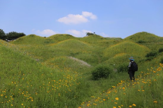 Bullo-Dong Ancient Tomb Park photo via Tripadvisor