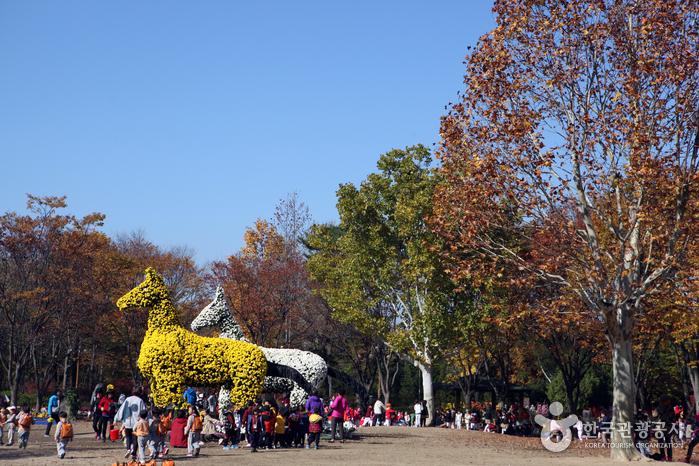 Daegu Arboretum photo via VisitKorea.or.kr