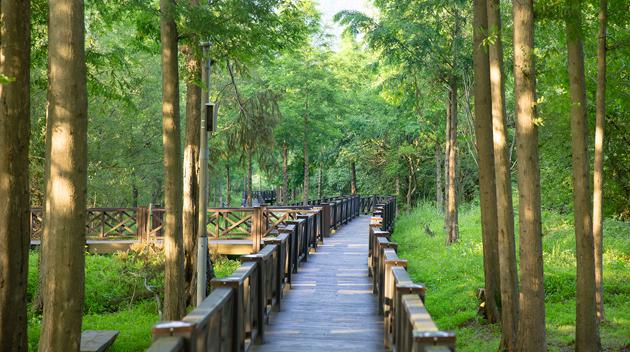 Gwangju Lake Eco Park photo via Gwangju Tourism
