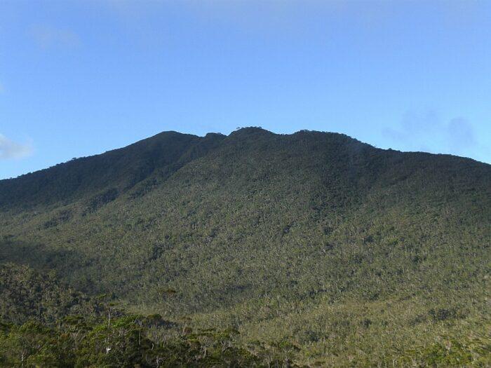 Mount Hamiguitan Range Wildlife Sanctuary by Kleomarlo via Wikipedia CC