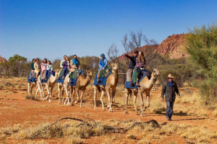 Pyndan Camel Tracks, Alice Springs