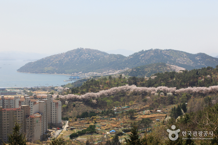 View from Anmingogae Hill