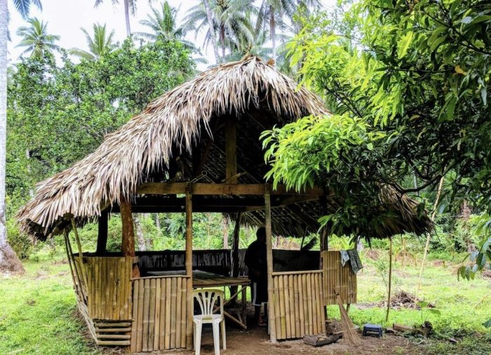Bulusan Native hut with hammock and half-board meals