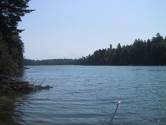Cobscook Bay State Park by Roban Kramer via Wikipedia CC
