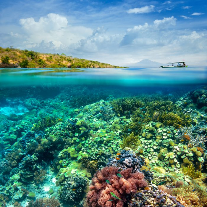 Beautiful Coral reef on background of cloudy sky and volcano photo via DepositPhotos