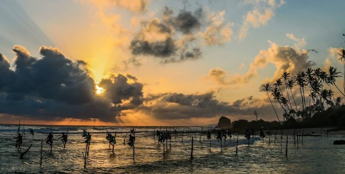 Best Things to do in Mirissa