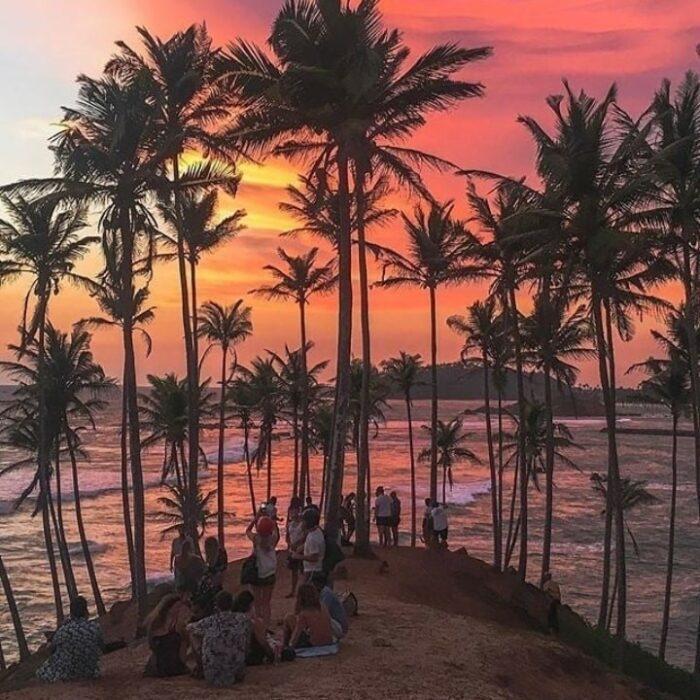 Coconut Tree Hill photo via FB Page