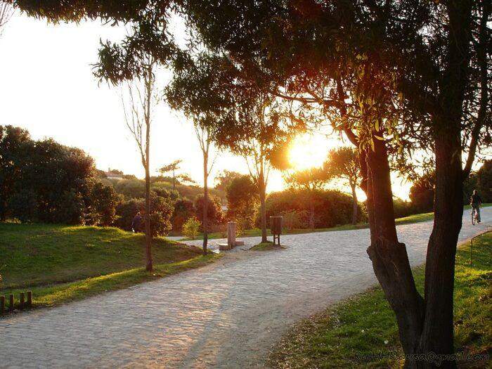 Parque da Cidade do Porto by RuiMMSousa via Wikipedia CC