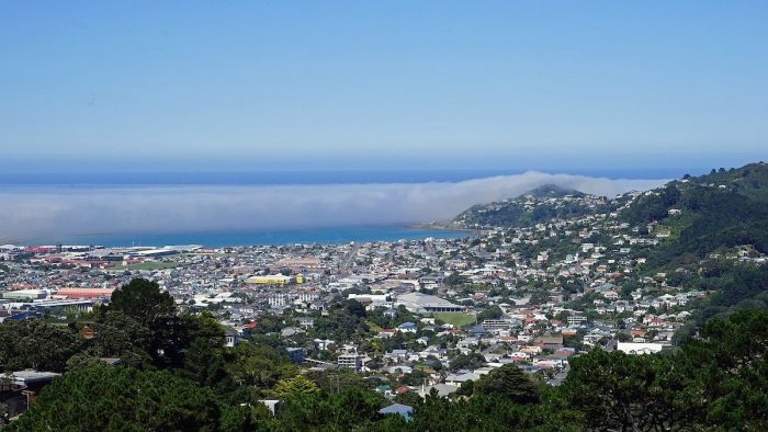 View from Mount Victoria in Wellington NZ